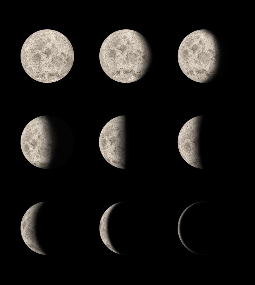 月齢と身体のリズムには密接な関係が